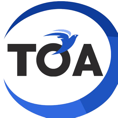 ToaCoin (TOA) coin