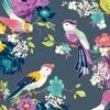 00623 hello birdie