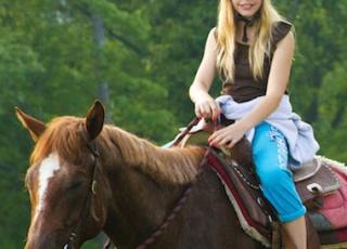 Horse-Listing-60