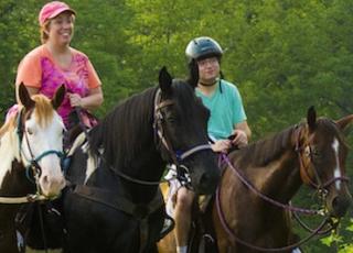 Horse-Listing-Sunset