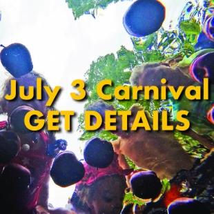 July-Carnival-details-01