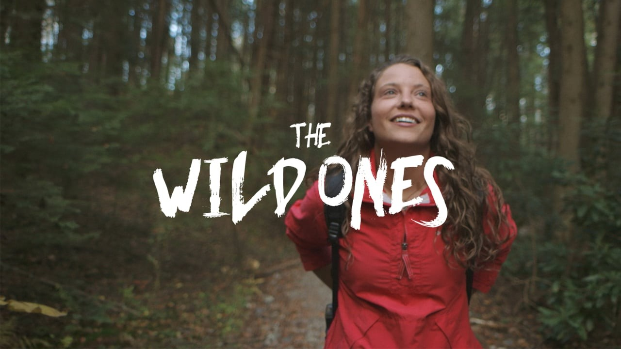 The Wild Ones: Bongo