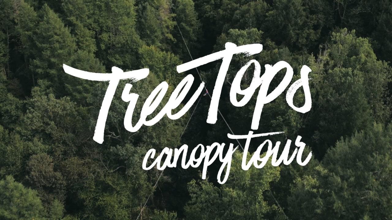 TreeTops Zipline Canopy Tour