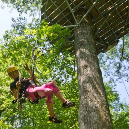 Treetops Zip Line Canopy Tour Adventures On The Gorge