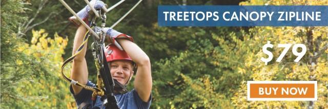 Treetops79