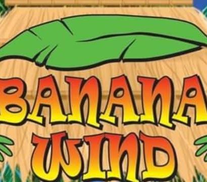 Banana wind promo pic 2 2020