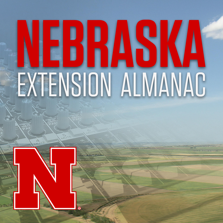 Nebraska Ag Almanac graphic