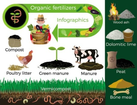 Type of Organic Fertilizer