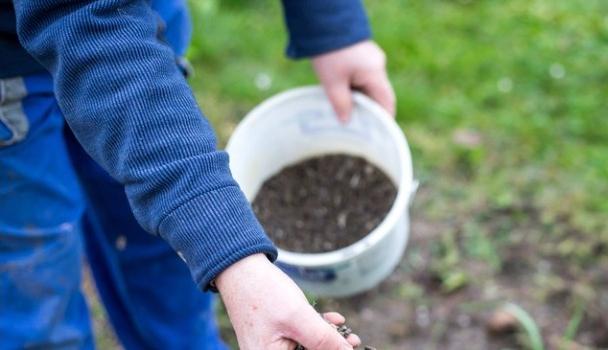 Soil Borne Diseases |  Define Causes & Control