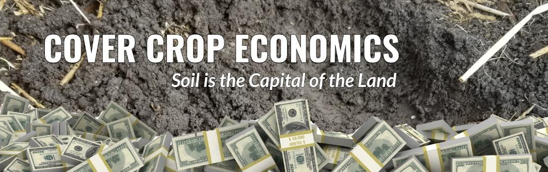 Cover Crop Corner: Part 2 Cover Crop Economics: Long-term gains through holistic improvements