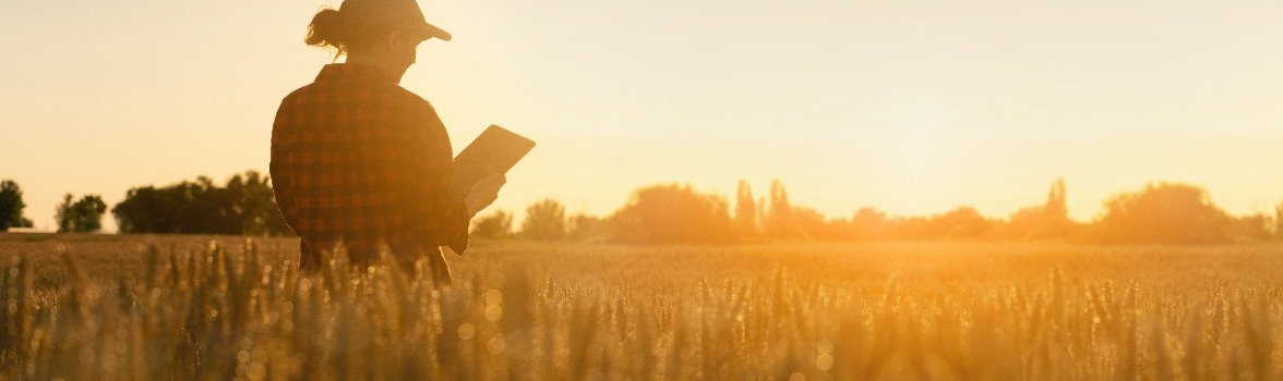 So Good They Can't Ignore You: How to get attention as a young farmer