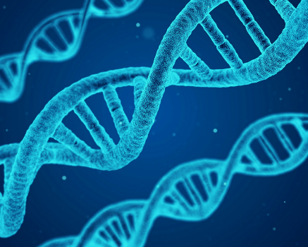 What Does CRISPR Mean for Modern Agriculture?