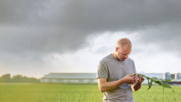 Prepare your farm for weather emergencies