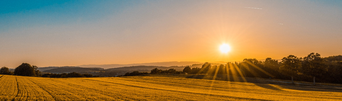 Sun Continues To Shine On Farmland Outlook