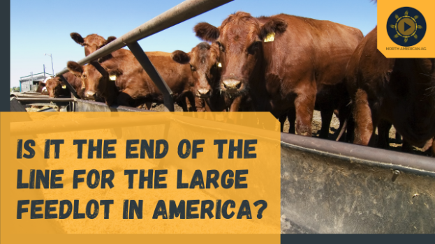 Is it the end of the line for the large feedlot in America?