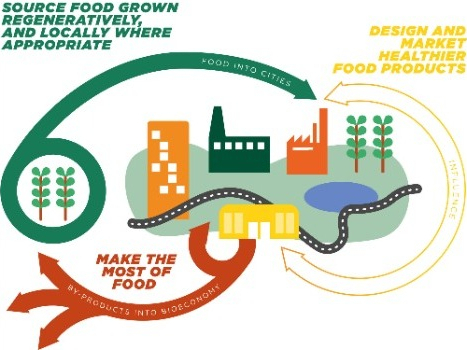 Utilizing corn wastes: Helping to build a circular economy in the corn industry
