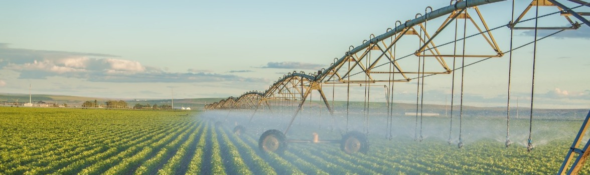 Cost Segregation Studies in the Agriculture Industry