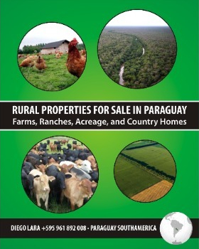For Sale in Paraguay South América Rural Fields, Farms and Ranches