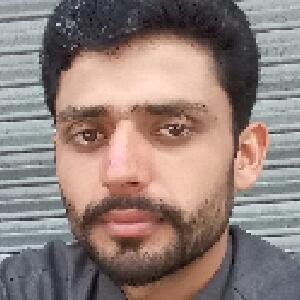 Faisal Hussain Shah