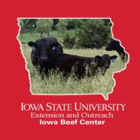 Iowa Beef Center