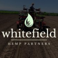 Whitefield Hemp