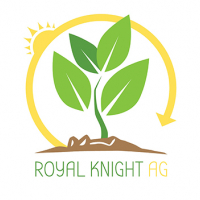Royal Knight AG
