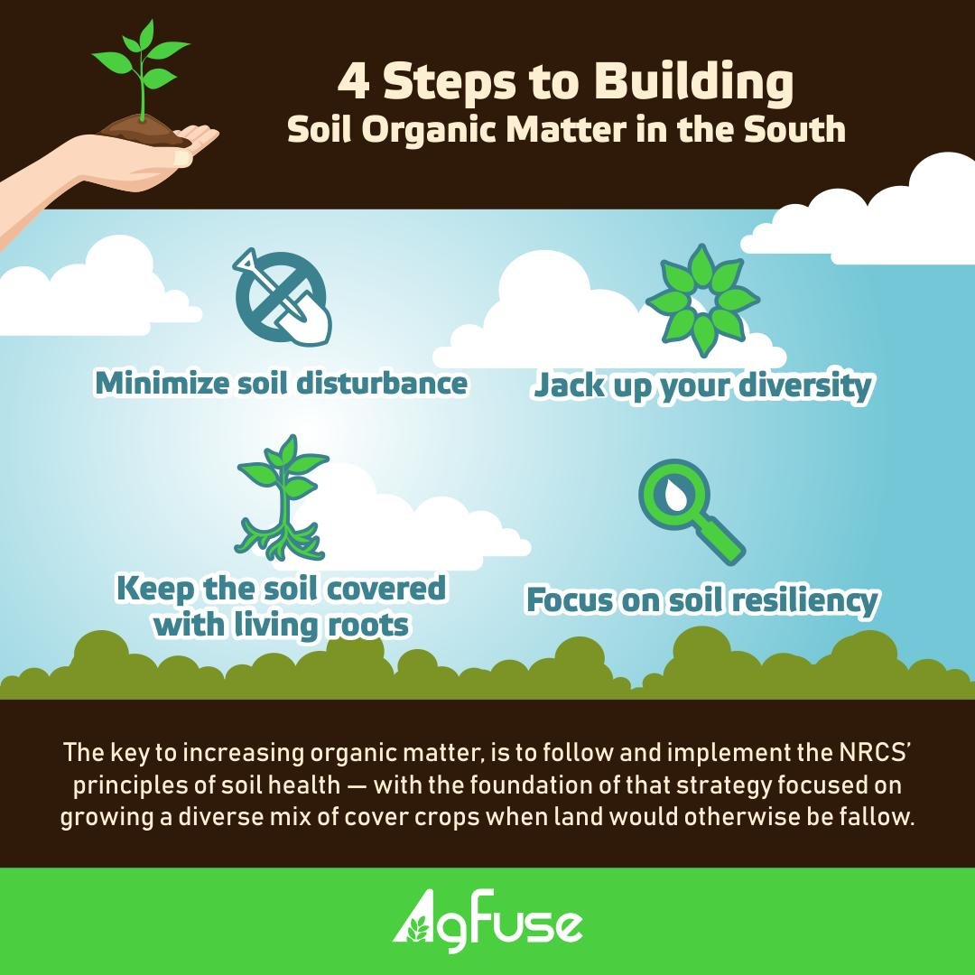 4 Steps to Building Soil Organic Matter in the South Infographic