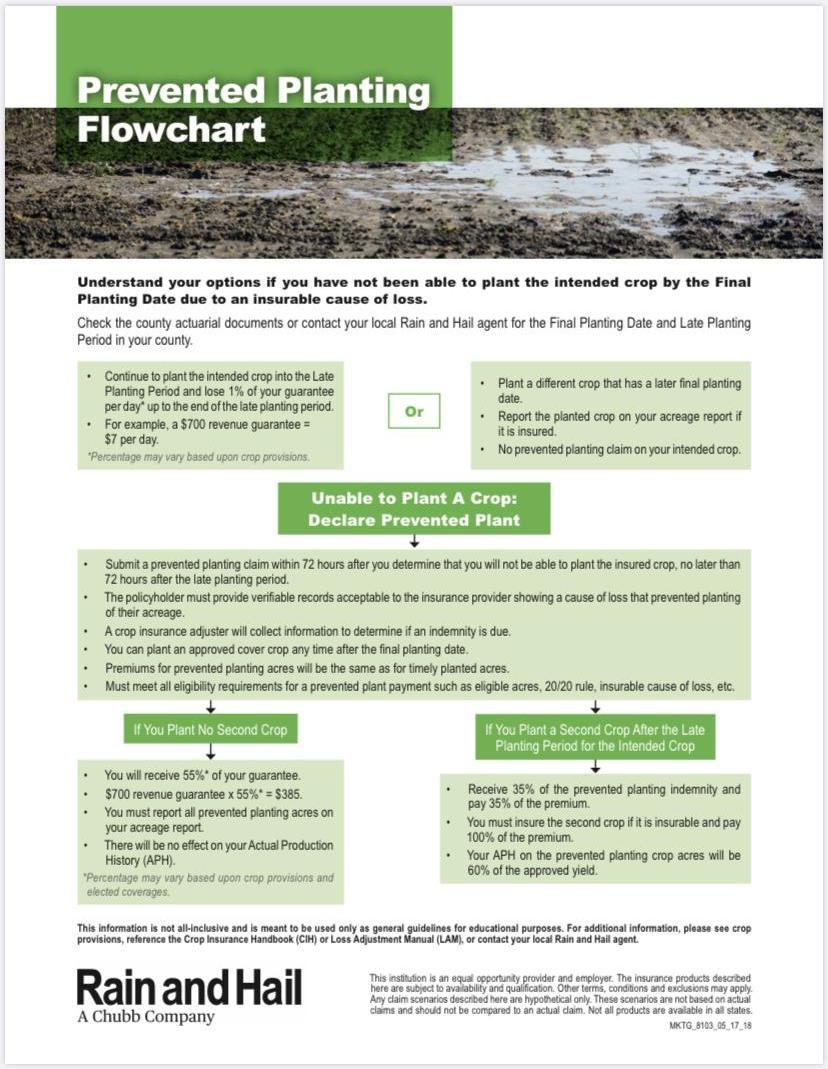 Prevented Planting Decision Flowchart