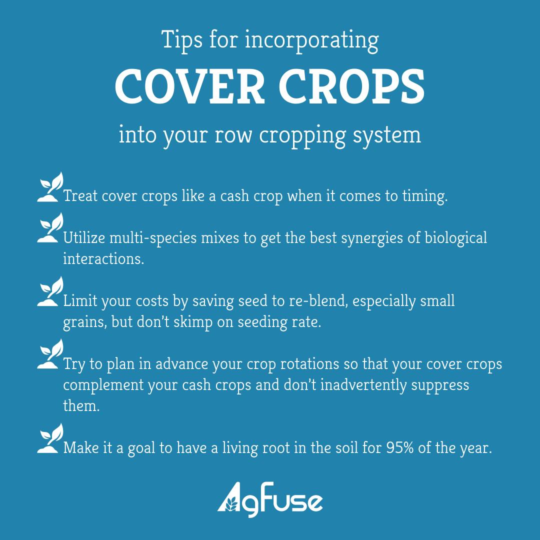 Tips for Incorporating Cover Crops into Your Row Cropping System