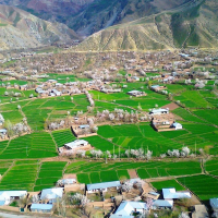 Pakistani Agriculturist