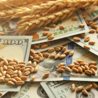 Ag Industry News And Insights