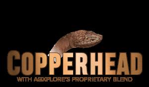 CopperPak Logo-01