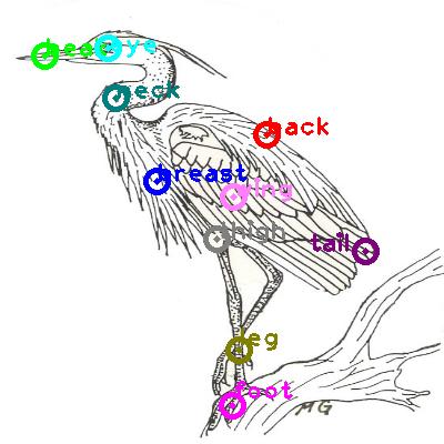 animal-crane_0008.png