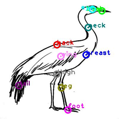 animal-crane_0018.png