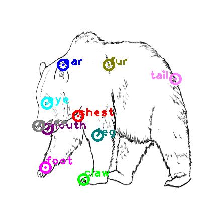 bear_0001.png