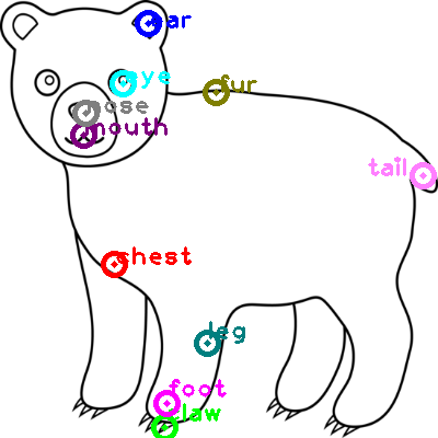 bear_0014.png