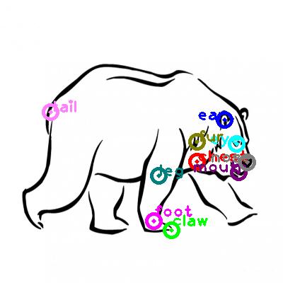 bear_0016.png