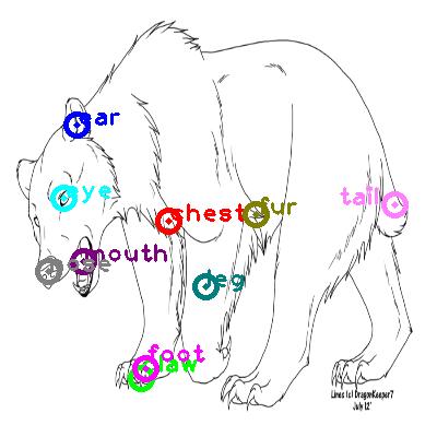 bear_0021.png
