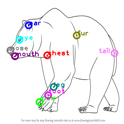 bear_0022.png