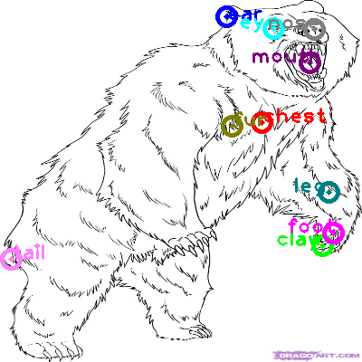 bear_0023.png