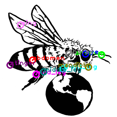 bee_0021.png