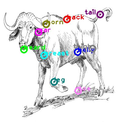 buffalo_0003.png