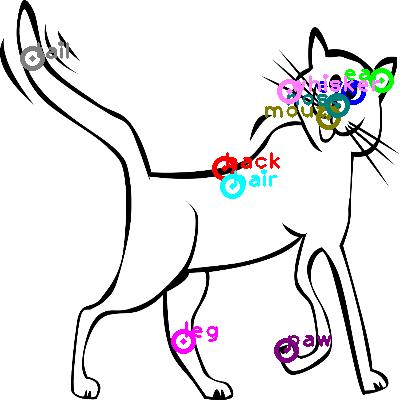 cat_0007.png