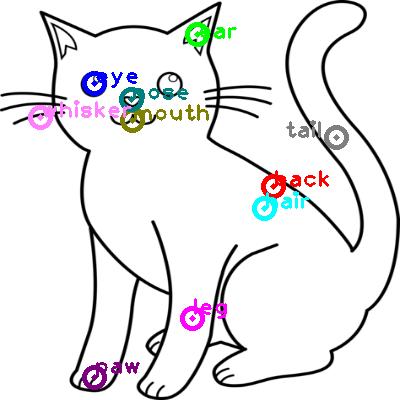 cat_0010.png