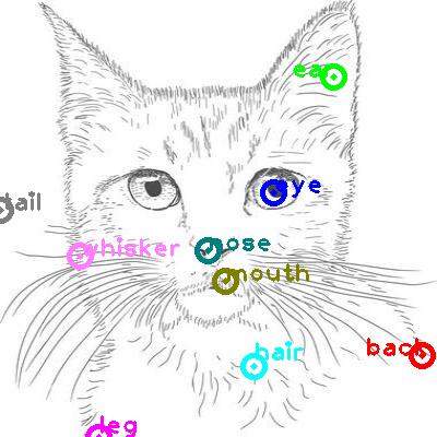cat_0016.png