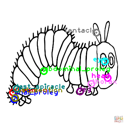 caterpillar_0004.png