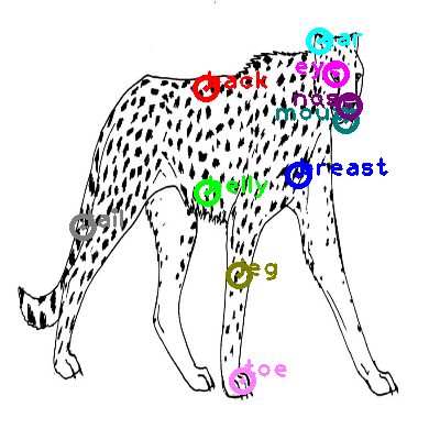 cheetah_0000.png