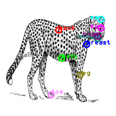 cheetah_0001.png