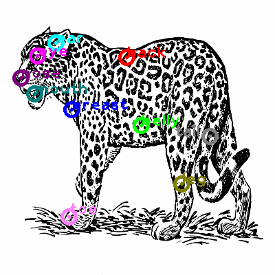 cheetah_0002.png