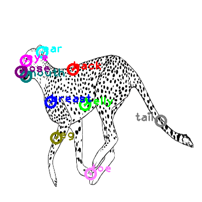 cheetah_0004.png